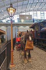 Milestones (Jainbow) Tags: milestones museum basingstoke horse lamppost jainbow least it cant nag jokeytagsfromeddiegibbs