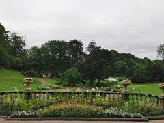 Avenham and Miller Park on a cloudy day (janettehall532) Tags: avenhamandmillerpark park avenhampark millerpark publicpark outdoors outdoorphotography naturephotography nature wildflower beautiful naturelovers prestonlancashire preston photosofpreston day summersmorning morning beauty beautyinnature green photo landscapephotography landscape northwestengland england huaweip30pro huawei flickr flickrcentral june lovenature pretty cloudy picture trees tree colour