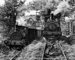 Foxfield Light Railway - Robert Heath H No 6 (1886) on mineral wagons & Beyer Peacock No 1827 (1878) in the siding wait in Foxfield Wood near the Colliery at the foot of the Bank up to Dilhorne Park on 21st September 1997 (robinstewart.smith) Tags: foxfield bank flr robert heath no 6 beyer peackock 1827 minerals 1997