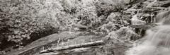 Falls (baro-nite) Tags: nantahalanationalforest westernnorthcarolina waterfall infrared panorama tiltshift pentax k5 rokinon13524mmedasumctiltshift iridientdeveloper affinityphoto