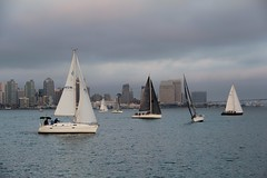 Regatta (seventh_sense) Tags: regatta sail sails sailing sailboat sailboats yacht yacts race san diego bay california ocean vessel craft vessels crafts harbor spring summer coast coastal nautical boat boats sailor sailors wind twilight dusk afternoon evening skyline city water buildings event