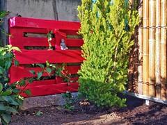 06 Juni - Japangarten (NoDurians) Tags: europalette epal palette rot upcycling
