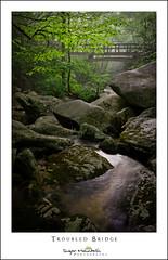 Troubled Bridge (DKNC) Tags: booneforkcreek blueridgeparkway northcarolina nc footbridge bridge summer creek stream daleking