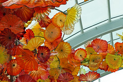 Chihuly Garden and Glass, Seattle, WA (SomePhotosTakenByMe) Tags: usa unitedstates america amerika seattle city stadt washington chihuly museum ausstellung exhibition seattlecenter kunst art glas glass