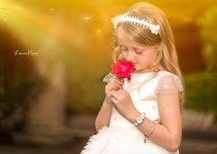 Child & a rose 🌹 (Lorrainemorris) Tags: redrose mood art artistic dublin lorrainemorris portrait zeissbatis85 sony7rm2 red rose yellow magical fireflys fairytale child fineart