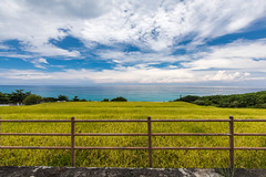 801A8407 (鹽味九K) Tags: 東海岸 台灣 tw formosa outside nature landscape countryside canoneos5dmarkiv perspective hualien