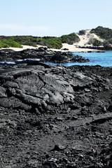 e P1020380 (Simon Caunt) Tags: galapagosarchipelago gadventures galápagos galapagosmarinereserve southamerica equador hilary lumix lumixtz100 leaveonlyfootprints