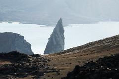 e P1020384 (Simon Caunt) Tags: galapagosarchipelago gadventures galápagos galapagosmarinereserve southamerica equador hilary lumix lumixtz100 leaveonlyfootprints