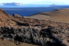 e P1020382 (Simon Caunt) Tags: galapagosarchipelago gadventures galápagos galapagosmarinereserve southamerica equador hilary lumix lumixtz100 leaveonlyfootprints