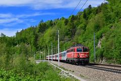 """1142 564 """"ÖBB"""" Wernstein (Matthias Greinwald) Tags: 1142 564 öbb österreichische bundesbahn rex passau linz wernstein am inn"""