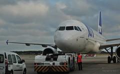 Joon Airlines Boeing A320 BCN (Barcelona) Ankunft / Arrival / Llegada *  .   DSC_5429-001 (Maya HK - On and Off) Tags: 010719 2018 aeropuertobarcelona barcelona barcelonaairport copyrightbymayahk españa flickr flughafenbarcelona joonairlines nikond3000 reisebarcelona2018 spain spanien