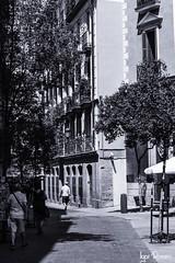 Calle de la Bolsa (profesorxproyect) Tags: nikon madrid españa spain street byn blackandwhite blancoynegro bw bn callejera ciudad city streetphotography d7100 sigma 2870mm virado cascoantiguo