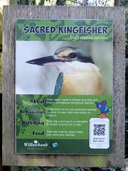 Willowbank226 (alicia.garbelman) Tags: christchurch newzealand sacredkingfisher willowbankwildlifereserve signs