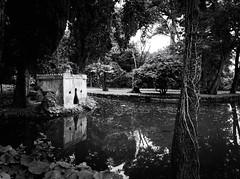 6065 - English garden (Diego Rosato) Tags: english water garden blackwhite pond fuji ruin royal palace acqua palazzo bianconero reale x30 giardino inglese realm rovina reggia stagno rawtherapee