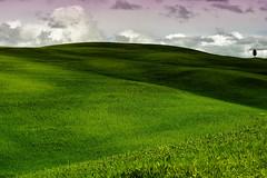 Green (giannipiras555) Tags: toscana verde green colore natura collina cielo nuvole albero landscape panorama nikon
