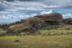 Paro (marko.erman) Tags: easterisland pacificocean rapanui faraway isolated remote island moai gigantic sculptures statues fallen destroyed tall tallest 70tons 10meters sony chile travel popular outside cloudysky outdoor ahutepitokura