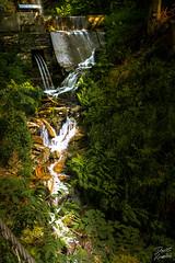 2019-06-20_11-02-15-HDR (der.dave) Tags: 2019 finsterbachwasserfälle juni kesselfall kärnten mittag sattendorf sommer sonne urlaub mittags sonnig österreich