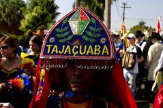 Paisagem Brasileira (Sergio Bertolo) Tags: documental folclore tradição cultura