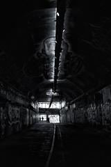 Walk the Lines (Daymon55) Tags: london city waterloo tunnel graffiti light dark wall bricks empty