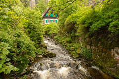 In The Black Forest (Jill Clardy) Tags: cruise river germany europe viking rhine badenwürttemberg breitnau black home forest deutschland village brook babbling sternen hofgut 201905299l8a3875