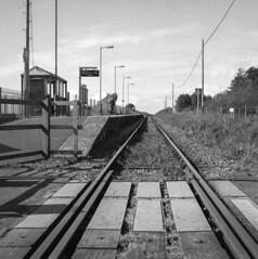 Tonfannau Station (Howie Mudge LRPS BPE1*) Tags: tonfannau railway station gwynedd wales cymru lines track signs mamiyac330s 6x6 120film analog analogphotography analogue mediumformat hc110 selfdevelop squareformat blackandwhite mono monochrome film filmphotography