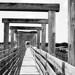 Stockyards - Longhorn Viewdeck