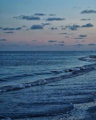 Last night on Sanibel. Sunset wasn't as explosive as some evenings, but still beautiful in it's on serene way. #sanibelisland #sunsetlovers #sunsetsofinstagram #sunset #dusk #oceanphotography #ocean #waves #pastel #instagood #olympusinspired #olympuspen # (Sivyaleah (Elora)) Tags: sanibel island florida vacation june 2019 ocean sunset dusk waves pastel olympus penf pen f