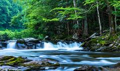 Smoky Mountain National Park (Redbird310) Tags: green plants water waterfall tennessee nationalpark nature landscape rock moss trees summer