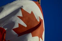 Canada Day (Paul B0udreau) Tags: flag canada mapleleaf nikkor70300mm wah werehere explore