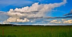 Sheared Rain Shower (evanlochem) Tags: towering cumulus cloud summer june farmland field prairies radway alberta canada rain shower