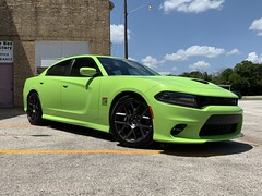 2019 Scat Pack (Smalltowntx87) Tags: 2019 ford f150 pickup truck ecoboost 27l crew cab trucks automotive sublime green metallic dodge charger chrysler fiat fca brand new cars iphone xs max 64 hemi 57 392 abyss gray