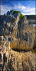 Flysch (katepedley) Tags: kaikoura coast peninsula canterbury canterburynz southisland south island newzealand new zealand aotearoa canon 5d 1740mm polariser rock geology limestone bedding vertical flysch layered layers sedimentary deformed fold folded folding amuri