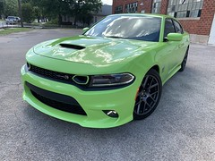 2019 Scat Pack (Smalltowntx87) Tags: 2019 dodge charger scat pack automotive fca fiat chrysler sublime green metallic 64 hemi 392 cars vehicles iphone xs max brand new dealership