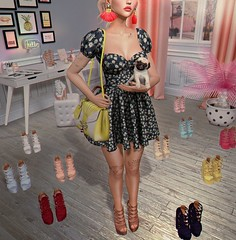 #304 Which one do I choose? (NuriaNiven) Tags: laq breathe avada taox pixicat andore barberyumyum emarie mandala ddl black bantam focus poses half deer aria secondsnaps second life sl avatar lotd lookbook blog blogger virtual pug heels