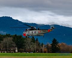 THE RETRO RCN SEA KING PULLING VAPES (AvgeekJoe) Tags: 12417 4017 443cityofnewwestministermaritimehelicoptersquadron 443maritimehelicoptersquadron 443squadron 61283 britishcolumbia ch124 ch124seaking ch124a ch124aseaking cyyj canada canadianarmedforces d5300 dslr helicopter importedkeywordtags navalaviation nikon nikond5300 rcaf register12417 royalcanadianairforce s61b saanichpeninsula seaking sikorskych124 sikorskych124seaking sikorskych124aseaking sikorskys61b sikorskyseaking tamron18400mm tamron18400mmf3563diiivchld thankyoucanada victoria victoriainternational victoriainternationalairport yyj airport cn61283 chopper colourbird rotatingwings vape vapes vapor vapors watervapor