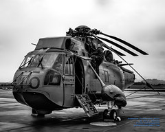 Stowing Ze Sea King in Black and White (AvgeekJoe) Tags: 12410 61245 bw blackwhite blackandwhite britishcolumbia ch124 ch124seaking ch124a ch124aseaking cyyj canada canadianarmedforces d5300 dslr helicopter importedkeywordtags nikon nikond5300 register12410 royalcanadianairforce saanichpeninsula seaking sikorskych124aseaking sikorskys61b tamron18400mm tamron18400mmf3563diiivchld victoria victoriainternational victoriainternationalairport yyj airport cn61245 chopper