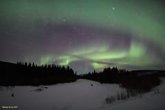 Aurora Borealis (naturalturn) Tags: aurora borealis auroraborealis stars night snow longexposure alaska usa image:rating=5 image:id=267067