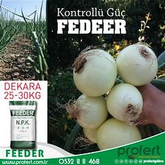 profert-SOĞAN (Profert Gübre) Tags: gübre fertili fertilizer sebze sebzecilik seracılık sera sulama seed soil toprak