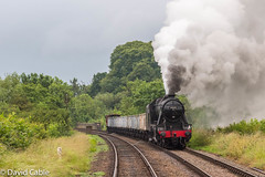 48305 coming away from Swithland Reservoir (davidcable347) Tags: gcr 48305 rabbitsbridge timeline 8f