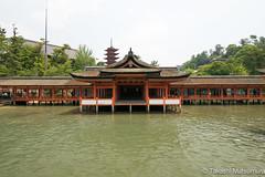 Itsukushima Shrine (takashi_matsumura) Tags: itsukushima shrine miyajima hatsukaichi hiroshima ngc japan nikon d5300 厳島神社 宮島 広島 architecture afp dx nikkor 1020mm f4556g vr
