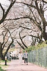 Wally-38 (dreamo19897) Tags: japan tokyo kamakura yokohama wallytsai photographer portrait weddingphotography weddingdress prewedding 瓦力 日本 日系寫真 婚紗 東京 鎌倉 橫濱 人像 櫻花 桜 写真 ウェディングドレス ウェディング