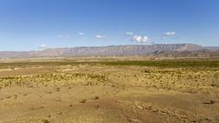 Dagger Flat IV (rschnaible) Tags: big bend national park texas outdoor landscape dagger flat
