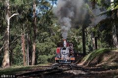 Na's (Dobpics O'Brien) Tags: 6a 7a narrow na ng gauge gembrook locomotive engine train pbr puffingbilly puffing pbps pass billy belgrave menzies creek lakeside rail railway railways steam victorian victoria vr