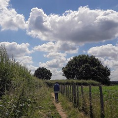 The Country Walk.... (markwilkins64) Tags: countryside clouds cloudscape trees track fence markwilkins calm sunny peaceful walk stroll undergrowth green kent
