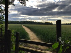 Over The Stile (Marc Sayce New 1) Tags: stile footpath clouds wheat fields kitwood four marks hampshire summer july 2019