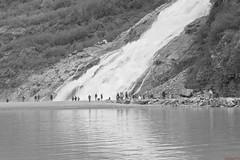 Chute d'eau, waterfall - Glacier Mendenhall, Juneau, Alaska, USA - 1755 (rivai56) Tags: chutesdeau waterfalls glaciermendenhall juneau alaska usa 1755 noiretblanc noir blanc black white blackandwhite photo et de la chute fall