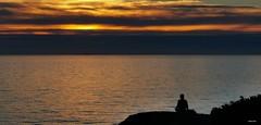Um local especial ( I I ) (antoninodias13) Tags: silêncio introspeção meditação natureza imensidão mar oceanoatlântico rumor aromas reflexos rotavicentina percursos caminhadas trilhos sudoeste praias areais isolamento odeceixe rogil aljezur faro algarve portugal huawei mate20pro surf