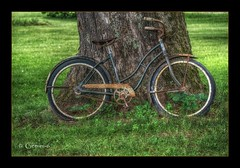 Leaning Against (* Gemini-6 * (on&off)) Tags: hdr framed bike bicycle tree green rust patina vintage wheels light shadow texture transportation