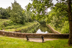SJ1_8884 - Foulridge Tunnel (SWJuk) Tags: colne england unitedkingdom swjuk uk gb britain lancashire foulridge barrowford tunnel foulridgetunnel canal water leedsliverpoolcanal trees grass bench seat 2019 jun2019 summer nikon d7200 nikond7200 nikkor1755mmf28 countryside landscape scenery view rawnef lightroomclassiccc