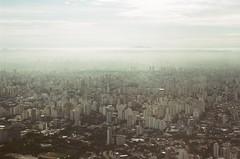 São Paulo (Lucas Marcomini) Tags: landscape cityscape airplane plane view from above flying são paulo sao sãopaulo saopaulo buildings urban city dreamy travel film filmphotography filmisnotdead analog 35mm grainisgood brasil brazil lucasmarcomini